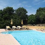 Garden / pool