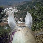view of Lanjaron from a horse at Casa el Viento