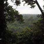 Machaca Hill Lodge, View
