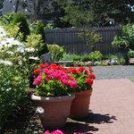 Garden at Pop's Sweet Shop