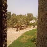 Foto di InterContinental Al Jubail