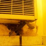 """EWW!! The nasty big black mystery spot that was under the air conditioner in our new """"nicer"""" roo"""