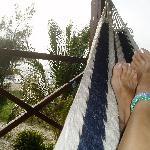 View from second floor hammock