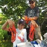 2 lobsters!