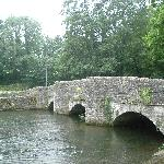 Sheep Bridge Ashford