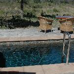 Outdoor Heated Plunge Pool