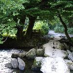 The Tarr Steps