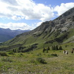 Brewster's Kananaskis Guest Ranch