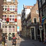 nice dazes in Amsterdam