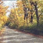 Quaker Street, Lincoln, VT in the Fall