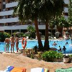 swimming-pool photo2