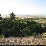 View from Lookout Point
