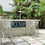 "The ""Ice Bar"" draws a crowd of loud drinkers at all hours of the night."