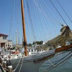 Skipjack H.M. Krentz