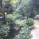 La Concepcion - Jardin Botanico-Historico de Malaga