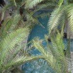La piscine, vue d'en haut
