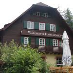 waldhotel forellenfof