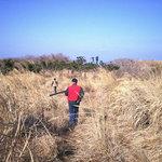 Pheasant Hunting, Daeyooland, Jeju, Korea