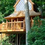 Longwood Gardens Treehouse exhibit