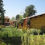 Towards the farmhouse through the gardens