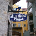 Blue Moose sign