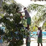 l'albero di natale in spiaggia.. finito era stupendo!!