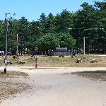 unshaded tent sites