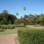 Taman Botani Brisbane Gunung Coot-tha
