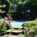 near the pool, in the garden