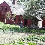 Freeman Farm from the Kitchen Garden at the Back