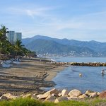 Playa de Oro Beach Puerto Vallarta