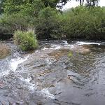river near homestay