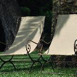 Deux chaises longues sous un palmier