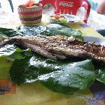 'pescao asao' en Zarabanda