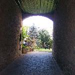 Pleasant looking courtyard