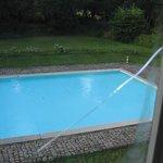 la piscine et ses feuilles vues de la chambre
