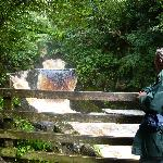 Ingelton Waterfall walk