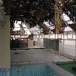 The Swimming pool floor