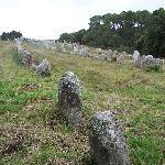 Allineamento di menhir a Carnac - 3
