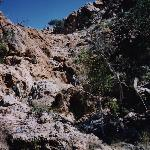 Waterkloof Trail