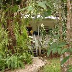 Hickatee's Beautiful Property!!!