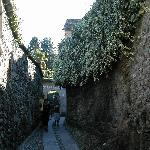 a narrow street of Orta