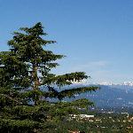 Vue depuis la chambre, zoom sur les Alpes