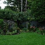 Garden picture #1