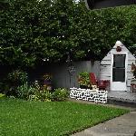 Garden picture #2