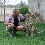The other half and tame Cheetah