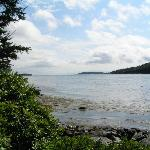 Boothbay Harbor from the island