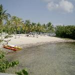 John Pennekamp Coral Reef State Park Campgrounds照片
