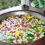 Flower bath at the Spa