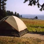 Foto de Bridge Bay Campground